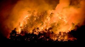 Ud. y yo: la principal causa de los incendios forestales en Chile