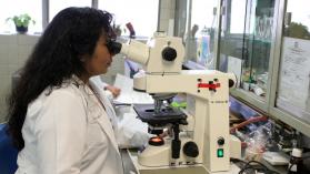 Por qué no basta con que haya más mujeres investigadoras para acabar con el sexismo en la academia