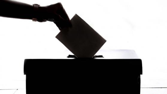 Demencia y derecho a voto: una reflexión desde las neurociencias