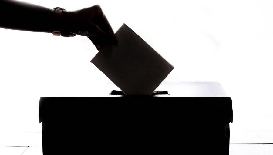 Demencia y derecho a voto: una reflexión desde las neurociencias – CIPER  Chile