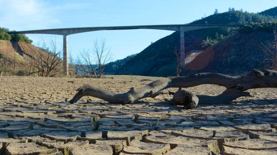 El avance de la desertificación II: los millonarios subsidios de riego a agroexportadoras