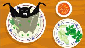 Murciélagos, serpientes, civetas… ¿de dónde ha salido el nuevo coronavirus?