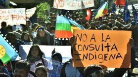Los errores que liquidaron la consulta indígena: «Es una instrumentalización de la pobreza»