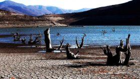 Enfrentar la sequía con una regadera: carretera hídrica, riesgos sistémicos y desafíos de política pública