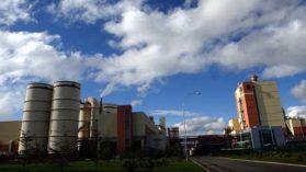 Celco vuelve a tribunales por planta Valdivia: intenta eliminar norma de calidad del agua