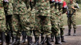 Guerrilla colombiana acusa a empresa forestal de Italo Zunino de usurpación de tierras