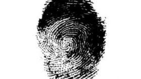 Registro Civil I: Graves irregularidades en millonaria licitación